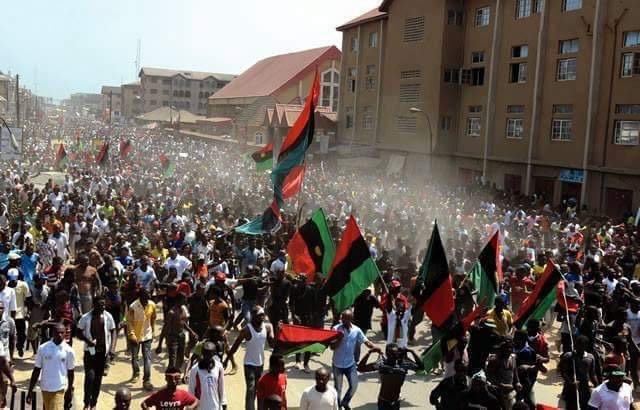 Image result for young biafrans